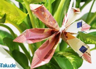 Geldscheine zu einer Blume falten