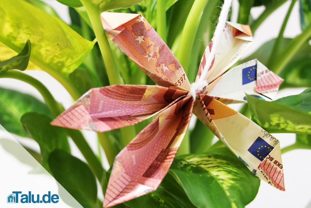 Blumen falten ~ Raum Haus mit interessanten Ideen