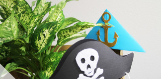 Ideen für Piratenparty
