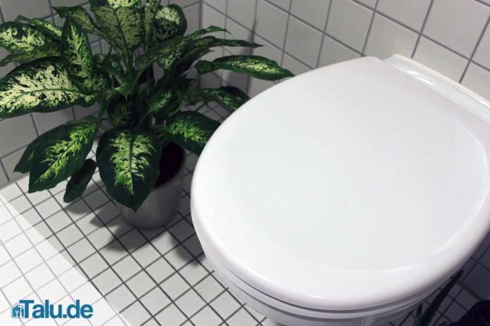 Toilettendeckel montieren