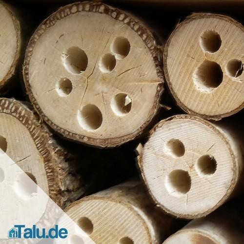 hartholz-mit-loechern
