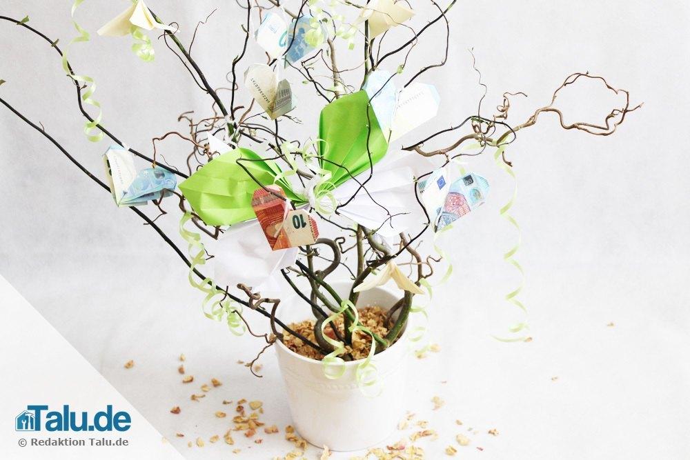 geldbaum-zur-hochzeit-schenken