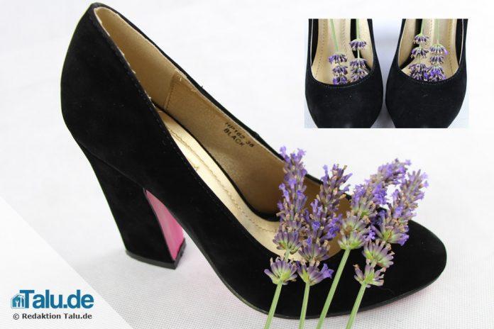 Was Hilft Gegen Stinkende Schuhe Diy Haushaltstipps Talu De