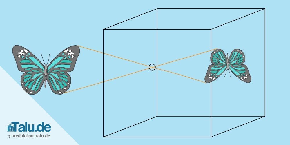 lochkamera-funktion-grafik