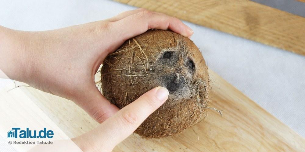 Kokosnuss öffnen
