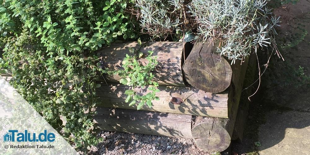 Hochbeet mit Baumstämmen