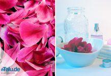 Rosenwasser herstellen
