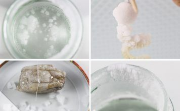 Salzkristalle züchten