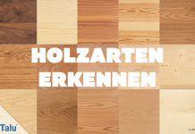Holzarten erkennen