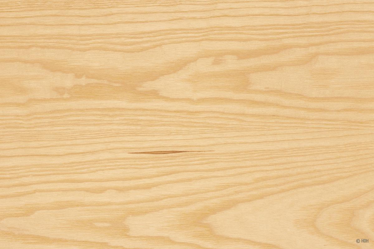 Holzarten Erkennen holzarten erkennen übersicht mit 33 weich und hartholzarten talu de