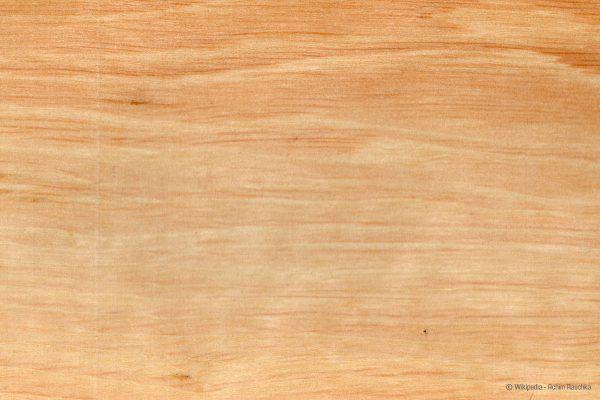 Hainbuchenholz