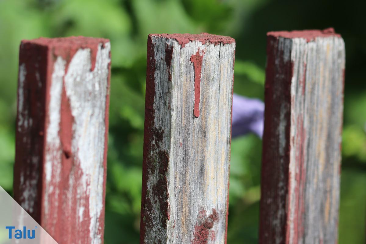 Zaun streichen
