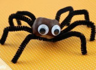 Spinne basteln