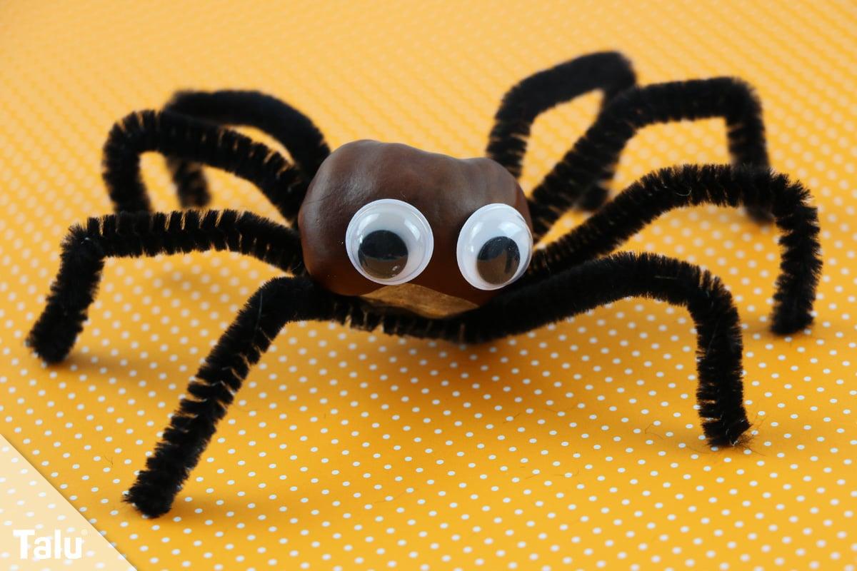 Spinne basteln Ideen und Bastelvorlage Talu