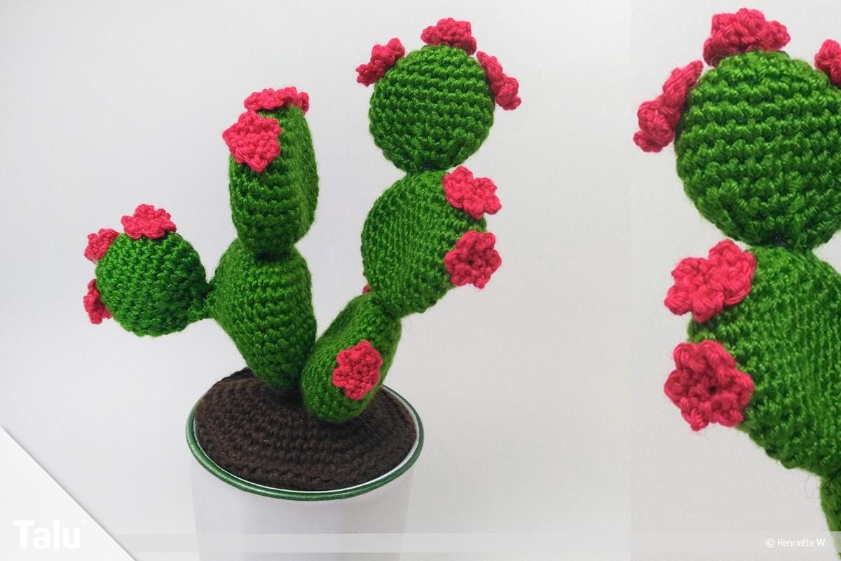 Kaktus häkeln - Blätterkaktus