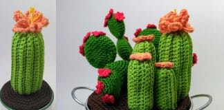 Kaktus häkeln - Anleitung Häkelkaktus