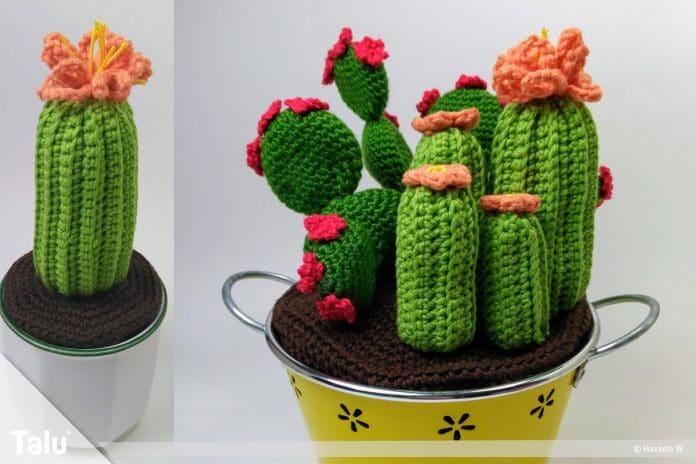 Kaktus Häkeln Anleitung Für Einen Häkelkaktus Talude