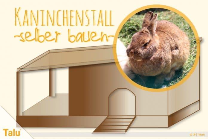 Kaninchenstall selber bauen, Hasenstall selber bauen – Anleitung