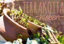 Terrakotta kleben, Terracotta-Töpfe reparieren