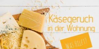 Käsegeruch in der Wohnung, so befreien Sie Küche und Kühlschrank