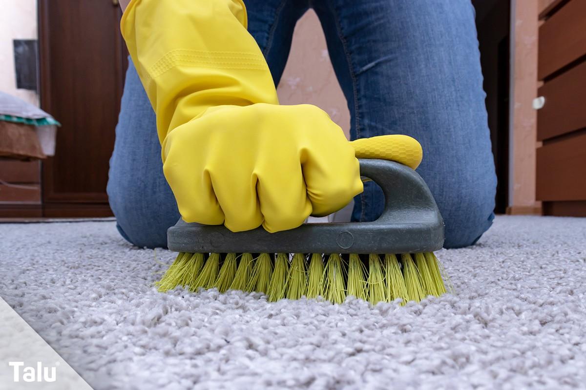 Teppich mit Bürste reinigen