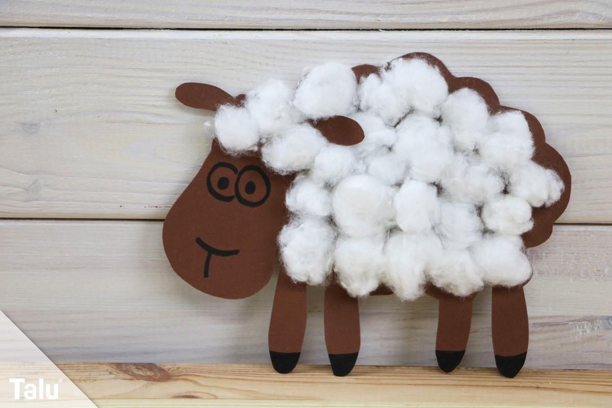 Schaf aus Wolle