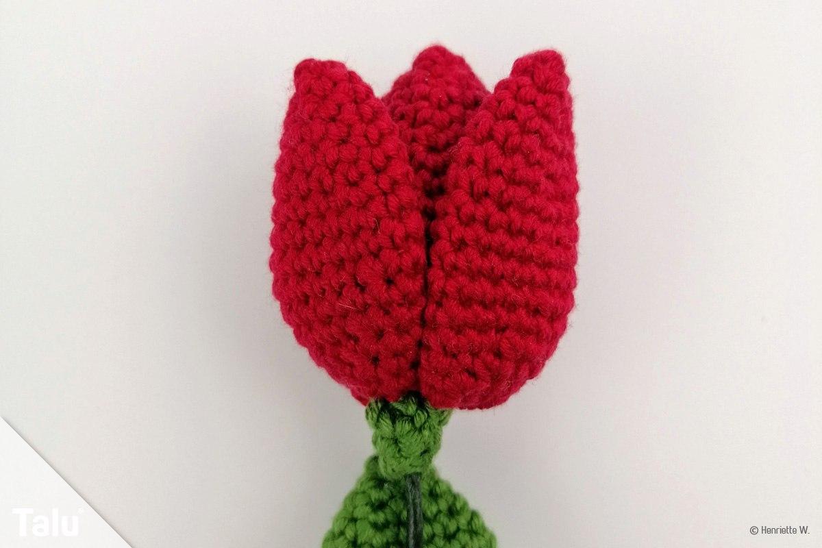 Tulpen häkeln