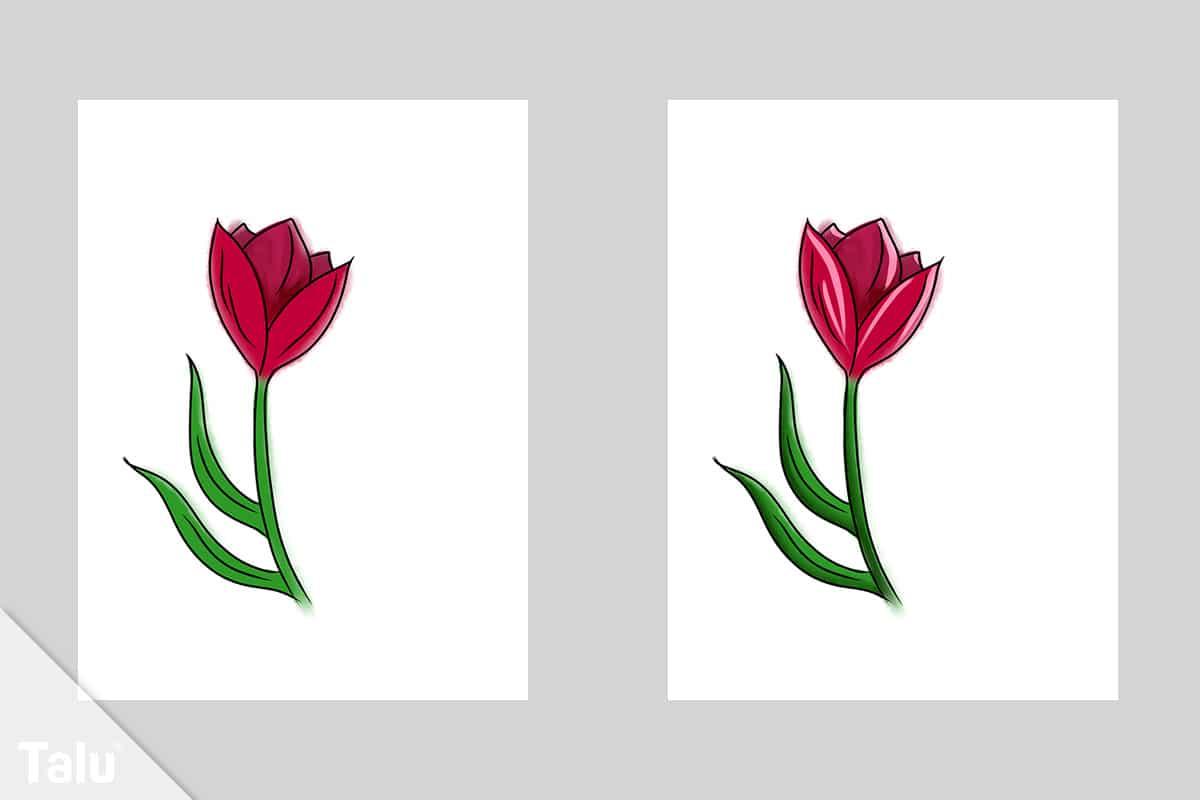 Tulpe zeichnen